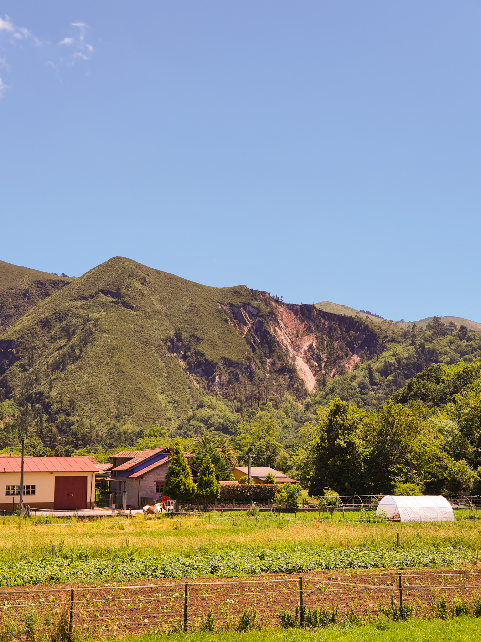 La Argayada